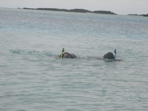 Yay!  Phyllis is snorkelling!