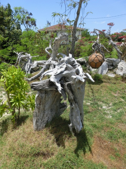 Garden of Eden is one of the local gardens where Willie has gathered all manner of driftwood and creatively constructed statues. What do you see?