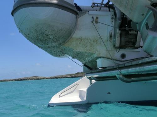 20130419 Bahamas Shroud Cay 3 Dirty Slurpy