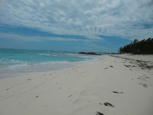 20130421 Bahamas Shroud Cay 53