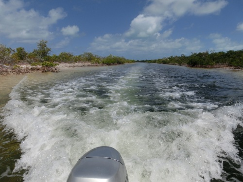 We head up the Mangrove lined canal into Duncan Town