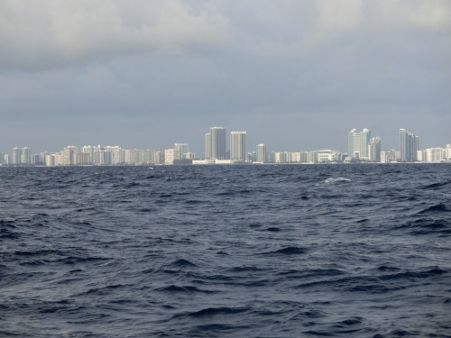 Fort Lauderdale looms into view